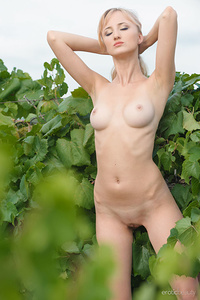 Zemira A sensually poses in the outdoors as she flaunts her beautiful tits and smooth   pussy.